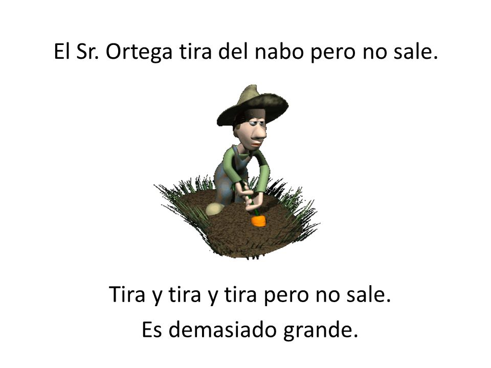 El Sr. Ortega tira del nabo pero no sale.