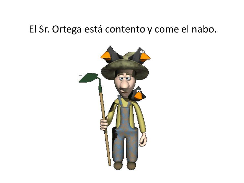 El Sr. Ortega está contento y come el nabo.