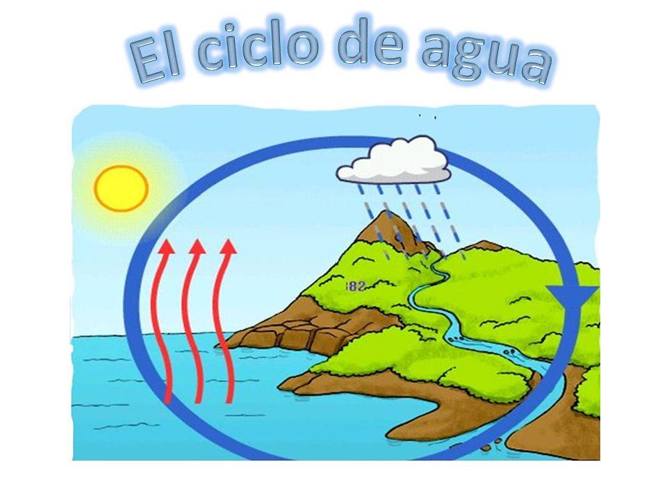 El ciclo de agua