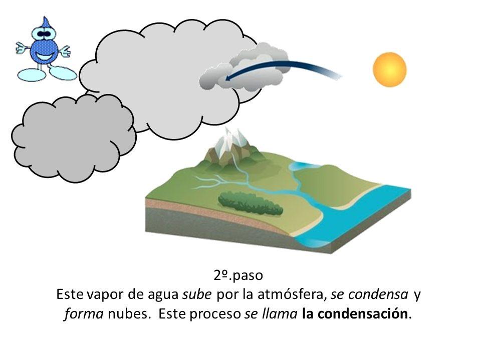 2º.pasoEste vapor de agua sube por la atmósfera, se condensa y forma nubes.