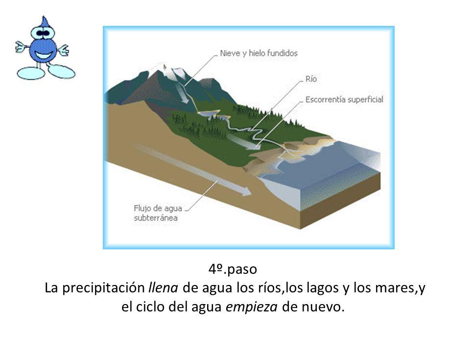 4º.pasoLa precipitación llena de agua los ríos,los lagos y los mares,y el ciclo del agua empieza de nuevo.