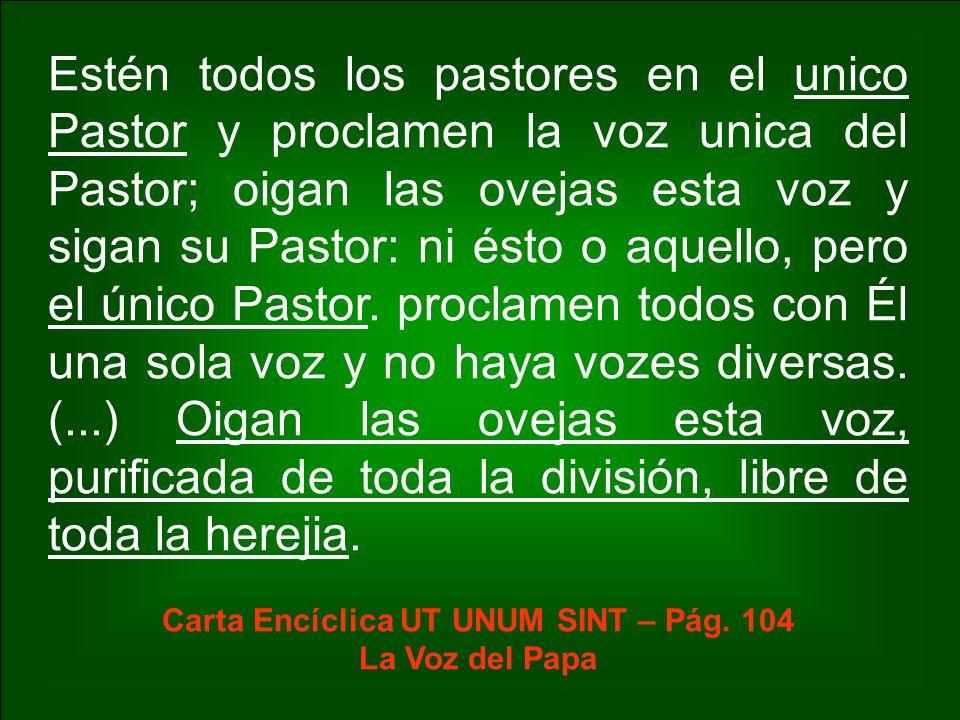 Carta Encíclica UT UNUM SINT – Pág. 104