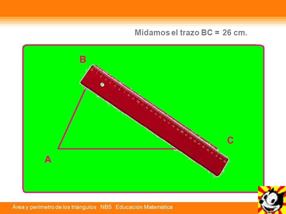 Midamos el trazo BC = 26 cm. B C A