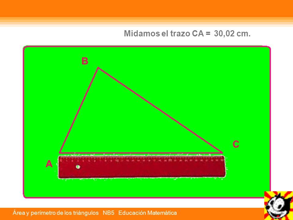 Midamos el trazo CA = 30,02 cm. B C A