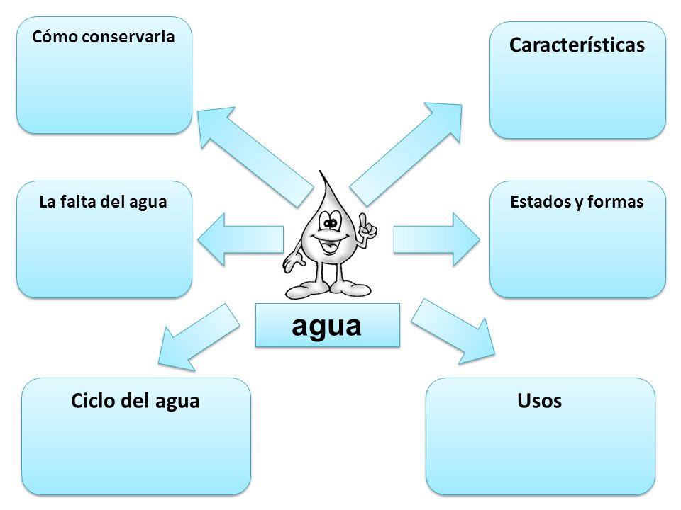 agua Características Ciclo del agua Usos Cómo conservarla