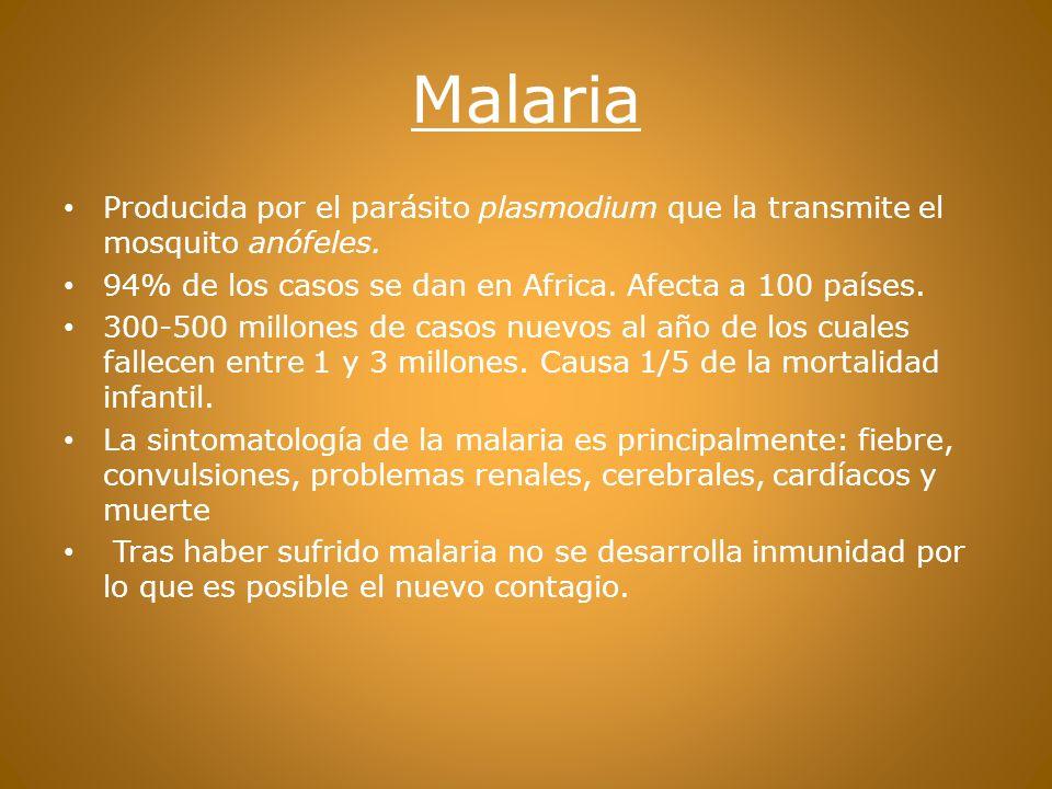 Malaria Producida por el parásito plasmodium que la transmite el mosquito anófeles. 94% de los casos se dan en Africa. Afecta a 100 países.
