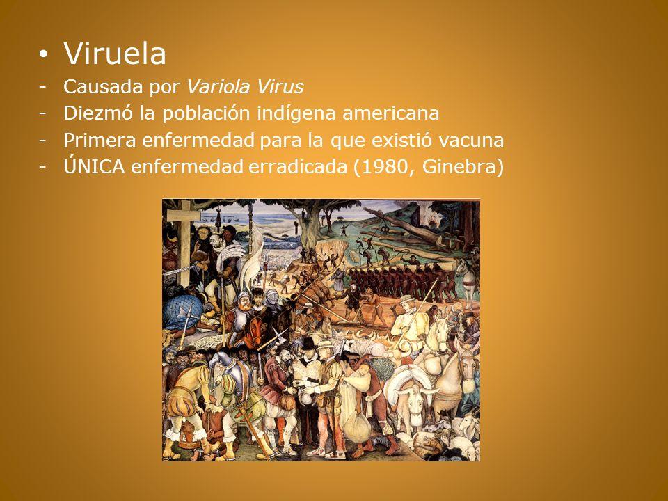 Viruela Causada por Variola Virus