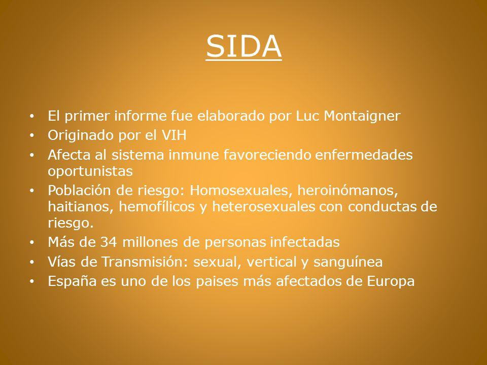 SIDA El primer informe fue elaborado por Luc Montaigner
