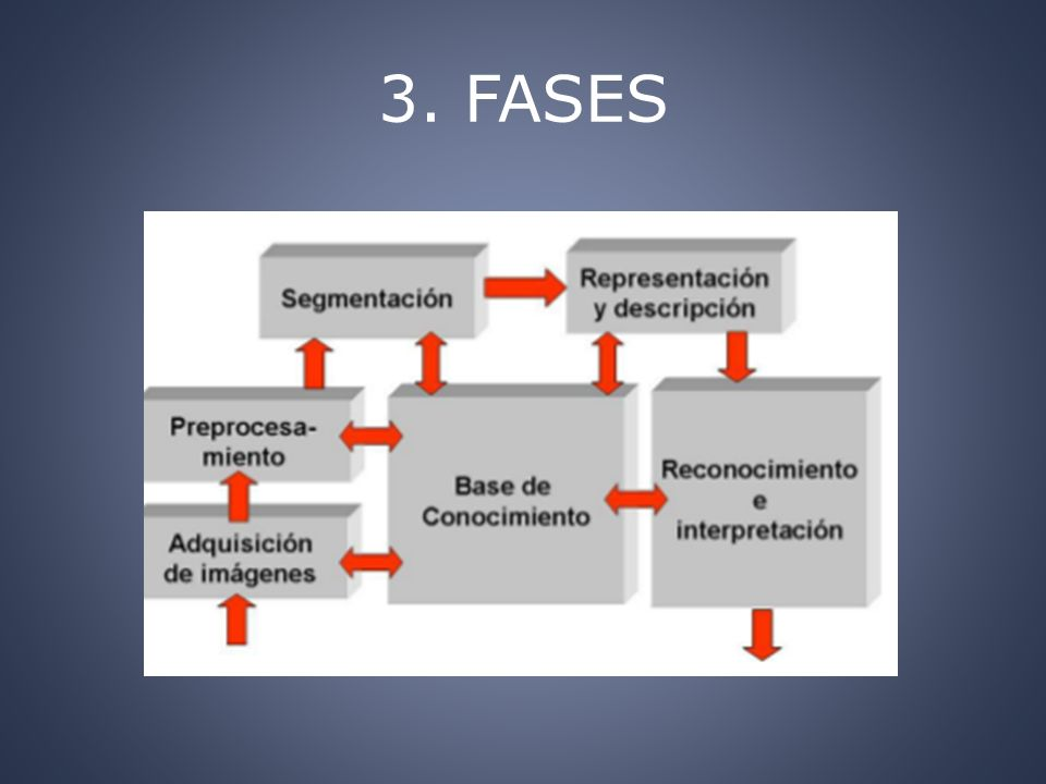 3. FASES