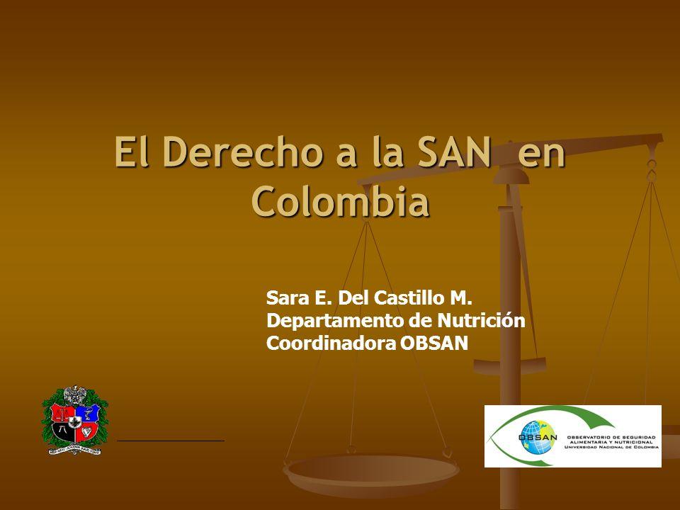 El Derecho a la SAN en Colombia
