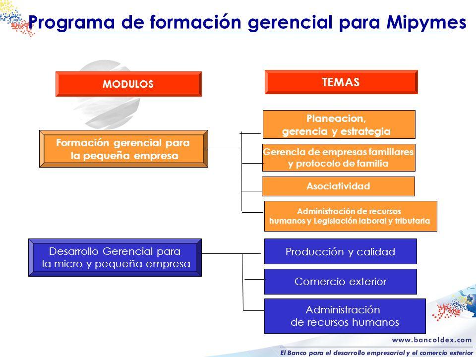 Programa de formación gerencial para Mipymes