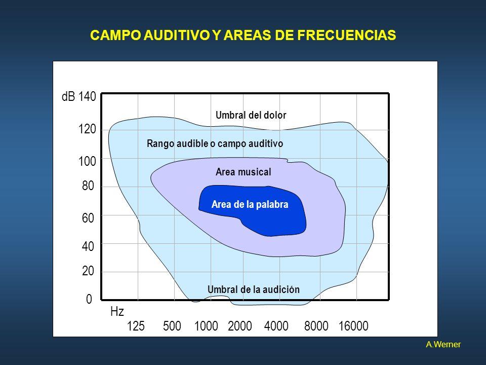 CAMPO AUDITIVO Y AREAS DE FRECUENCIAS