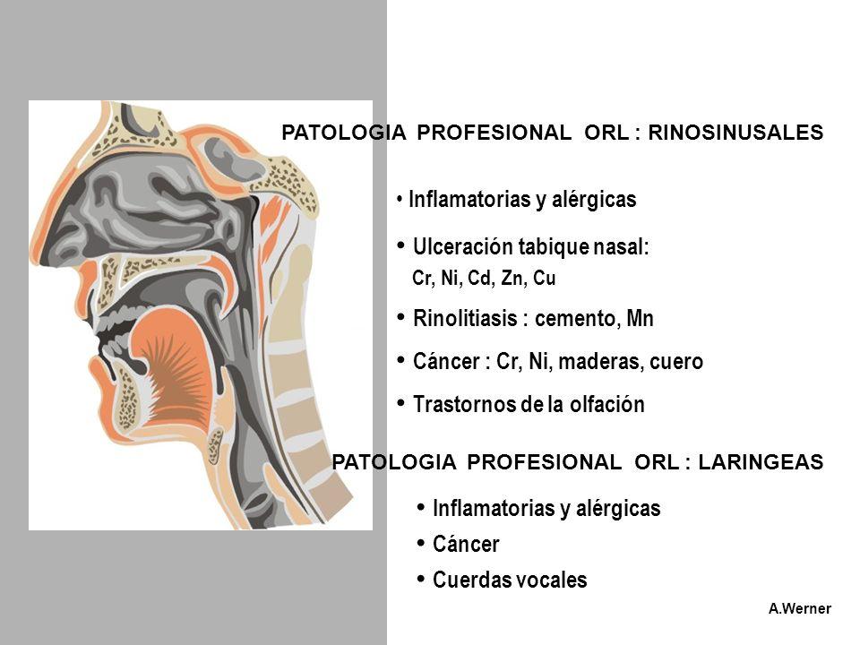 Ulceración tabique nasal: