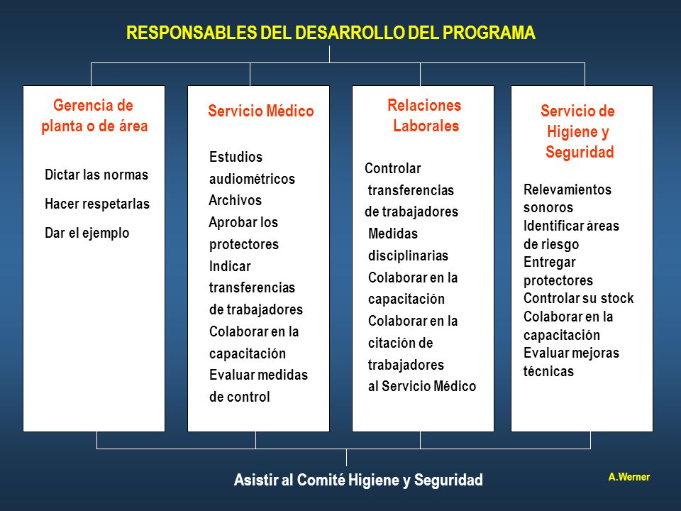 RESPONSABLES DEL DESARROLLO DEL PROGRAMA