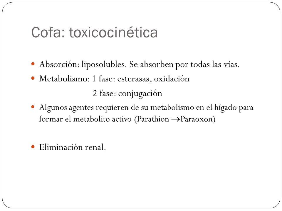 Cofa: toxicocinética Absorción: liposolubles. Se absorben por todas las vías. Metabolismo: 1 fase: esterasas, oxidación.