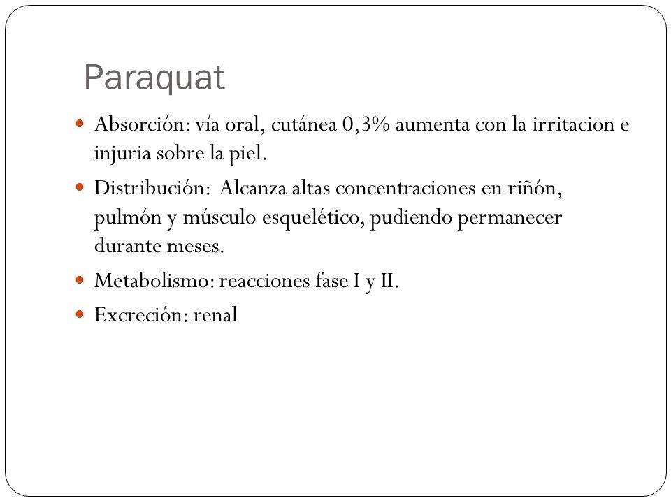 Paraquat Absorción: vía oral, cutánea 0,3% aumenta con la irritacion e injuria sobre la piel.