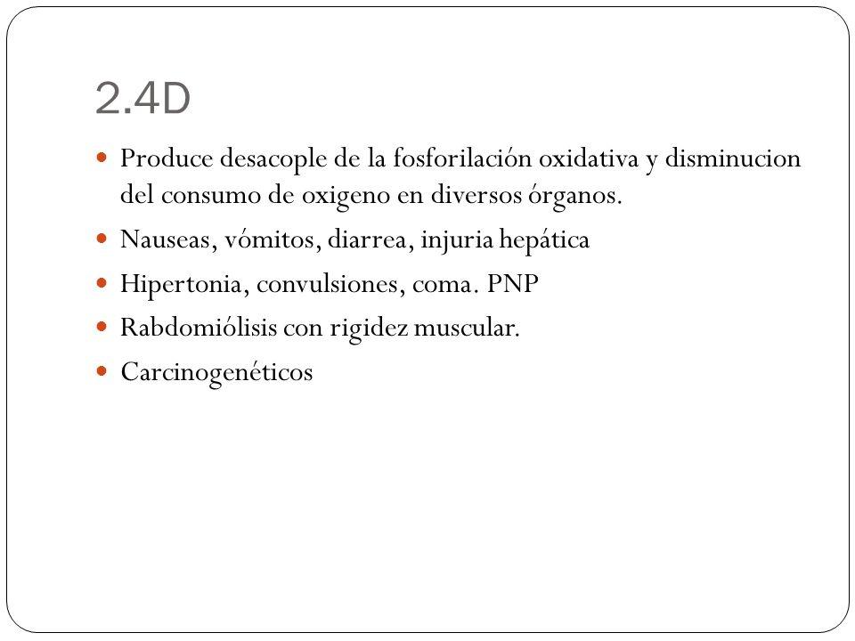 2.4D Produce desacople de la fosforilación oxidativa y disminucion del consumo de oxigeno en diversos órganos.