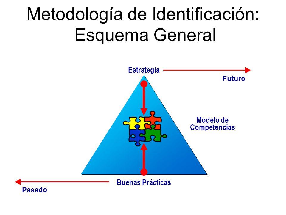 Metodología de Identificación: Esquema General