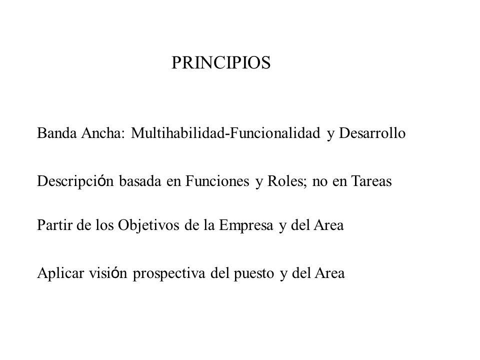 PRINCIPIOS Banda Ancha: Multihabilidad-Funcionalidad y Desarrollo