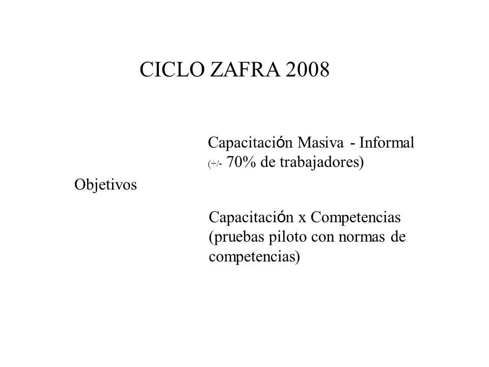 CICLO ZAFRA 2008 Capacitación Masiva - Informal Objetivos