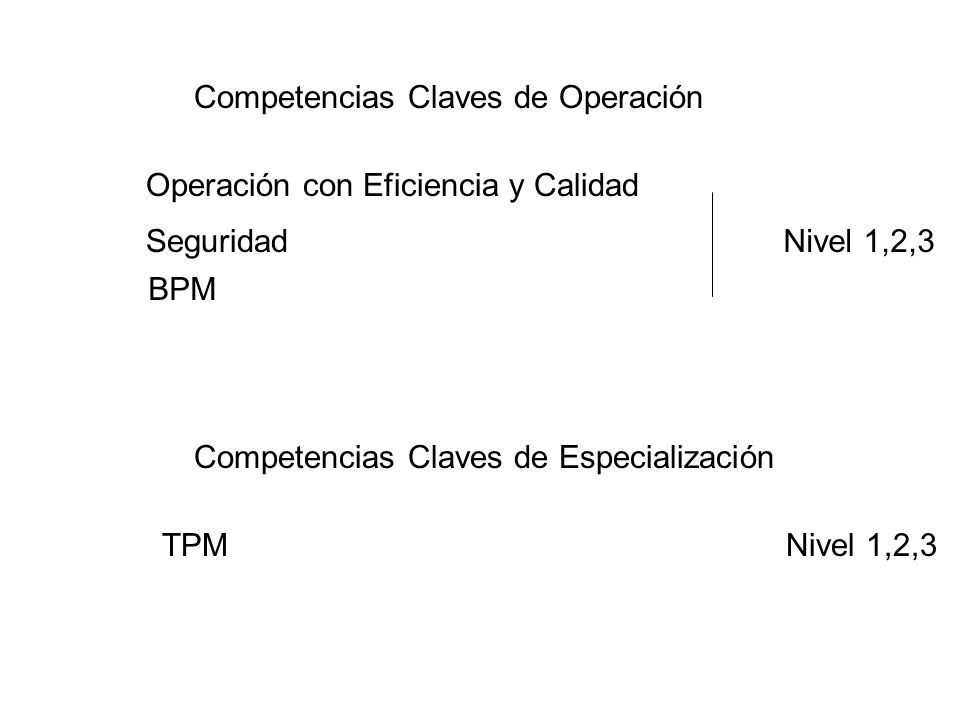 Competencias Claves de Operación