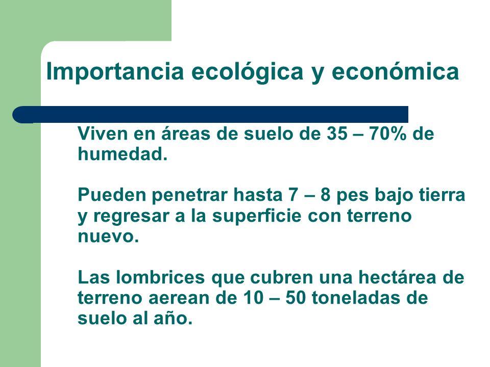 Importancia ecológica y económica