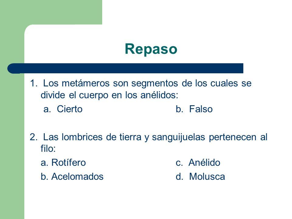 Repaso 1. Los metámeros son segmentos de los cuales se divide el cuerpo en los anélidos: a. Cierto b. Falso.