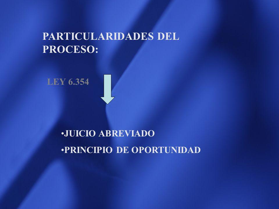 PARTICULARIDADES DEL PROCESO: