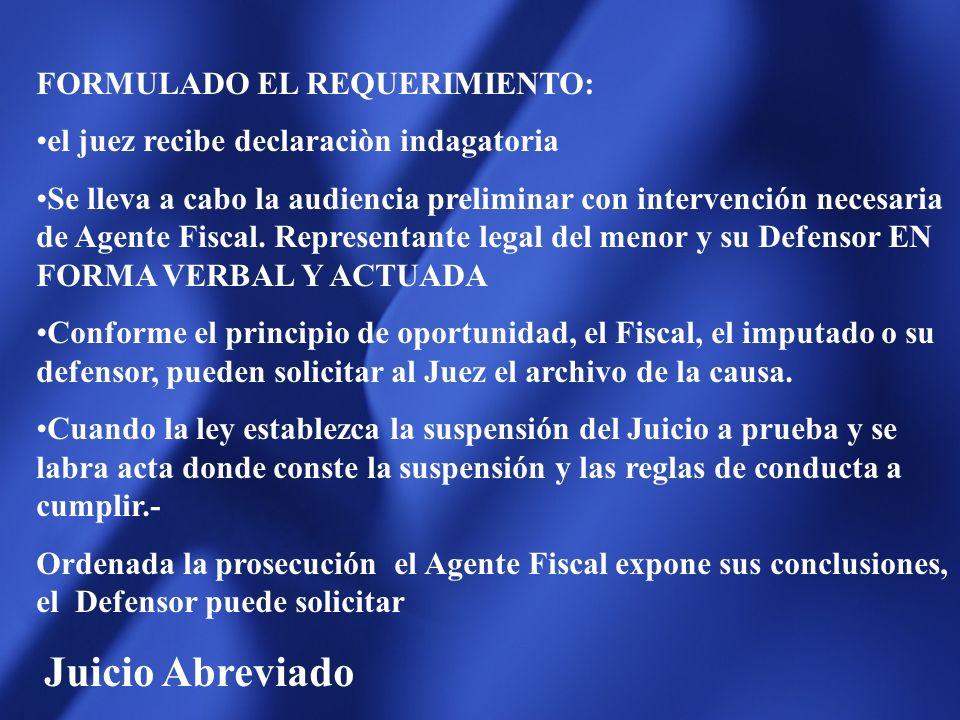 FORMULADO EL REQUERIMIENTO: