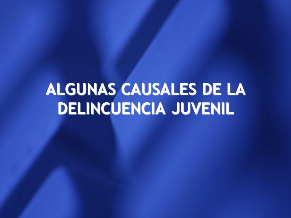 ALGUNAS CAUSALES DE LA DELINCUENCIA JUVENIL