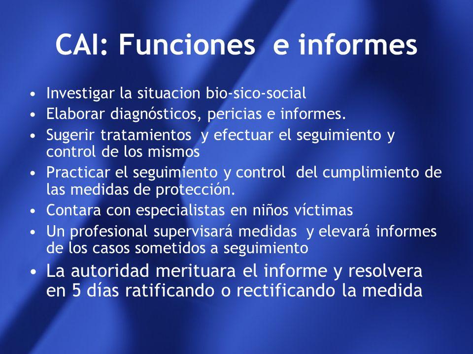 CAI: Funciones e informes