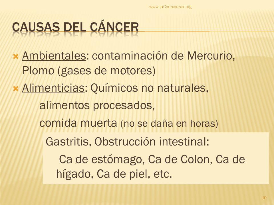 www.laConciencia.org CAUSAS DEL CÁNCER. Ambientales: contaminación de Mercurio, Plomo (gases de motores)