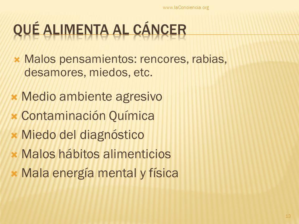 Qué alimenta al cáncer Medio ambiente agresivo Contaminación Química