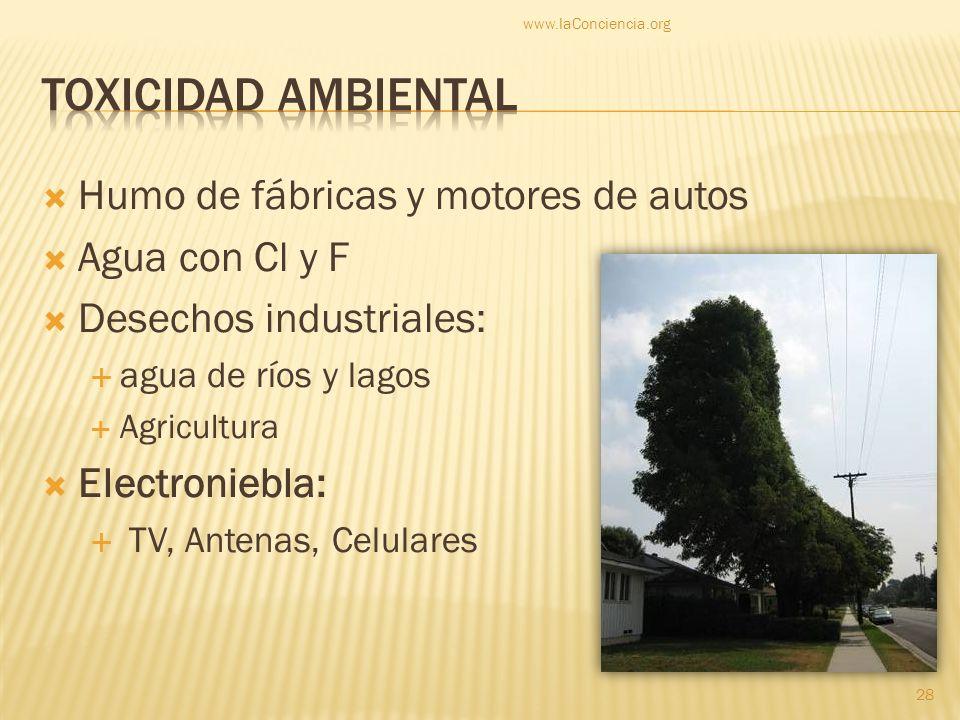 Toxicidad ambiental Humo de fábricas y motores de autos