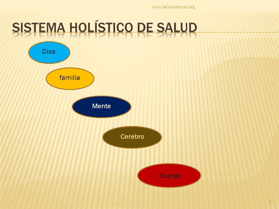 Sistema holístico de Salud