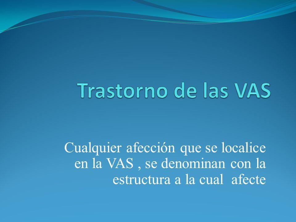Trastorno de las VASCualquier afección que se localice en la VAS , se denominan con la estructura a la cual afecte.