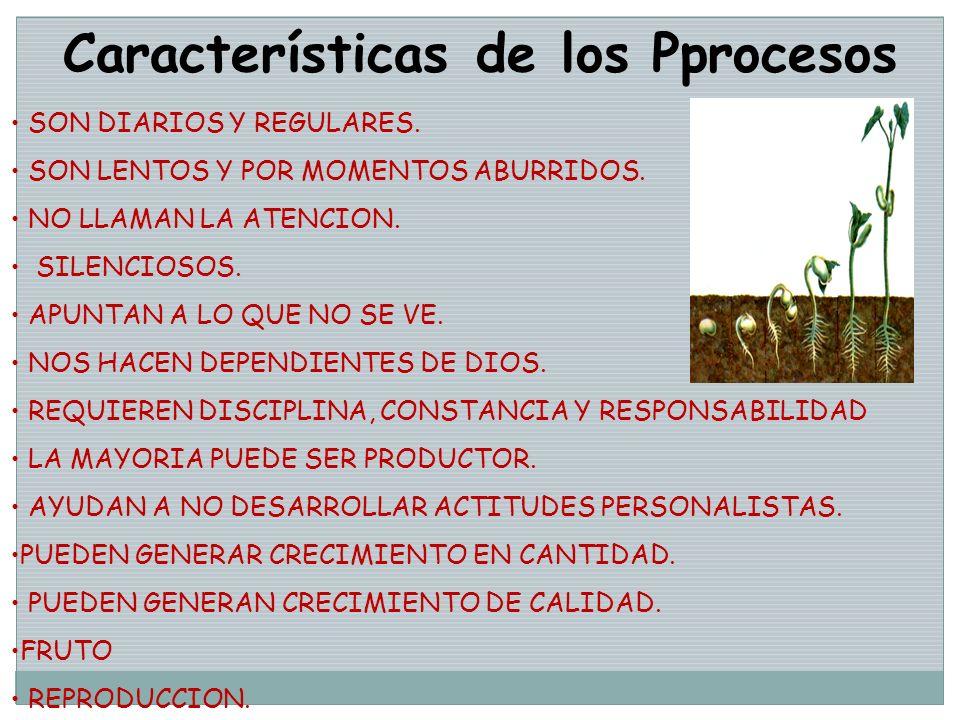 Características de los Pprocesos