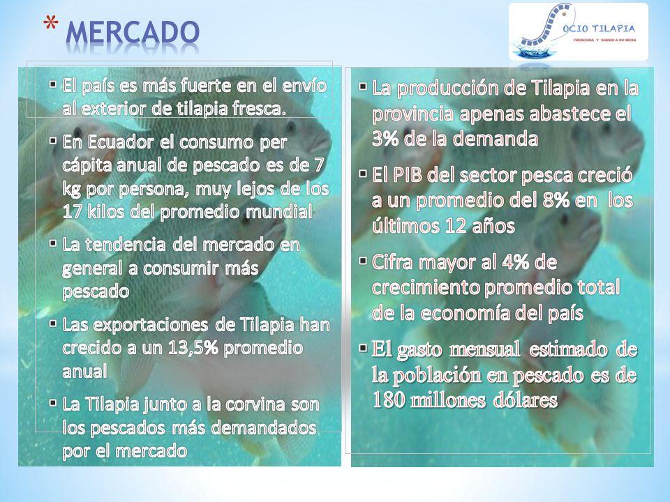 MERCADO El país es más fuerte en el envío al exterior de tilapia fresca.