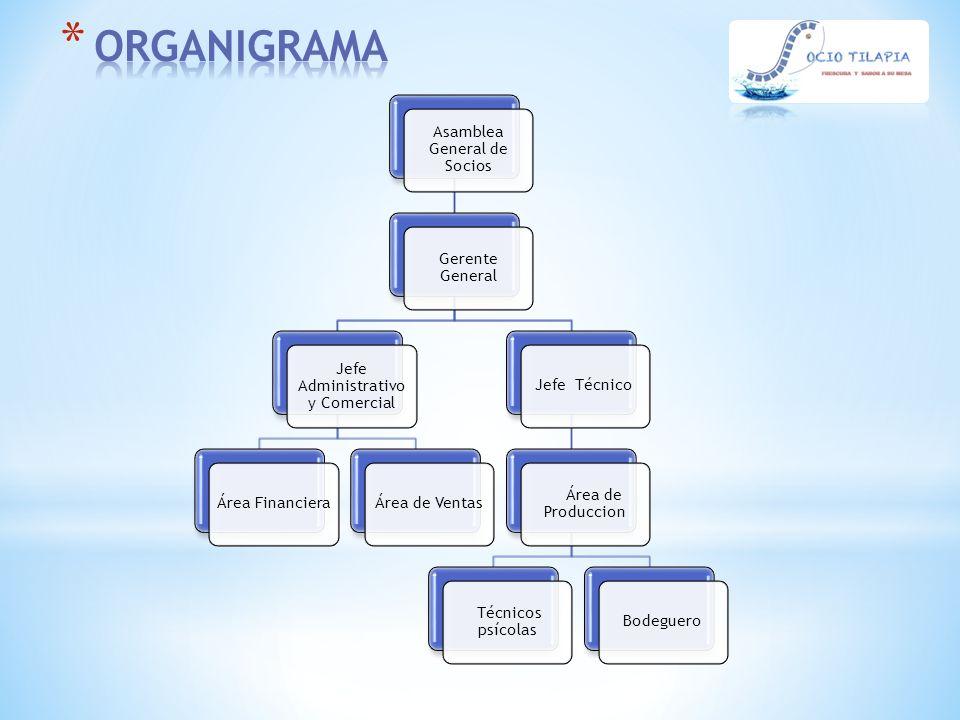 ORGANIGRAMA Asamblea General de Socios Gerente General