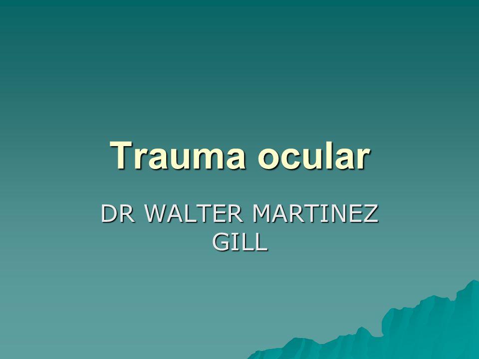 DR WALTER MARTINEZ GILL