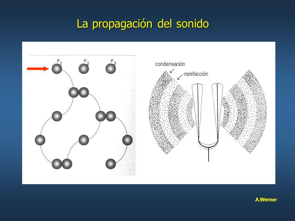 La propagación del sonido