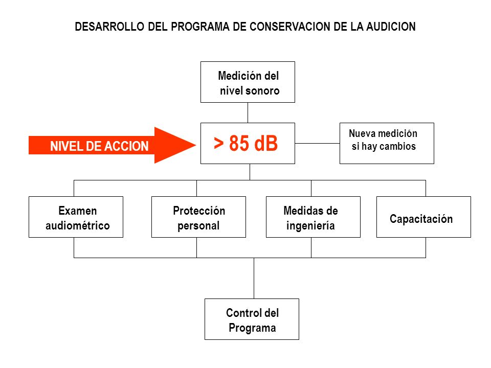 DESARROLLO DEL PROGRAMA DE CONSERVACION DE LA AUDICION