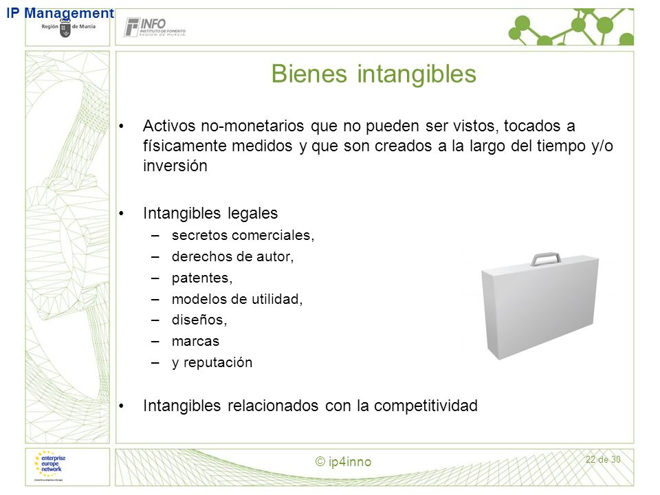 IP Management Bienes intangibles. Classification of assets.