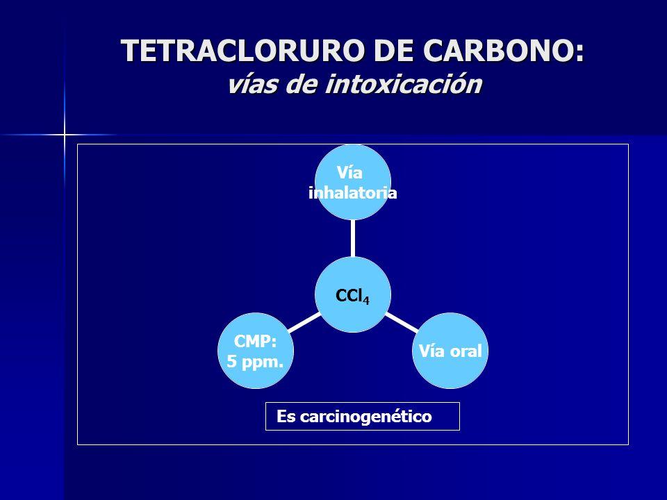 TETRACLORURO DE CARBONO: vías de intoxicación