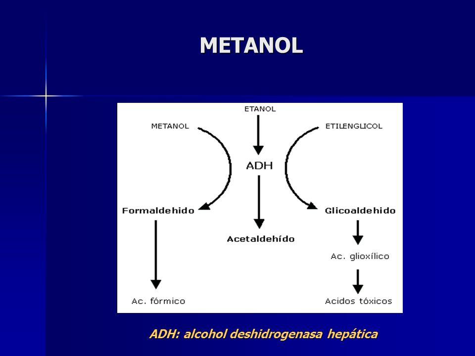 METANOL ADH: alcohol deshidrogenasa hepática