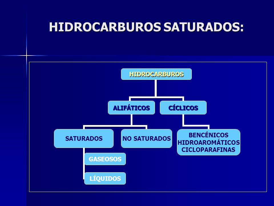HIDROCARBUROS SATURADOS: