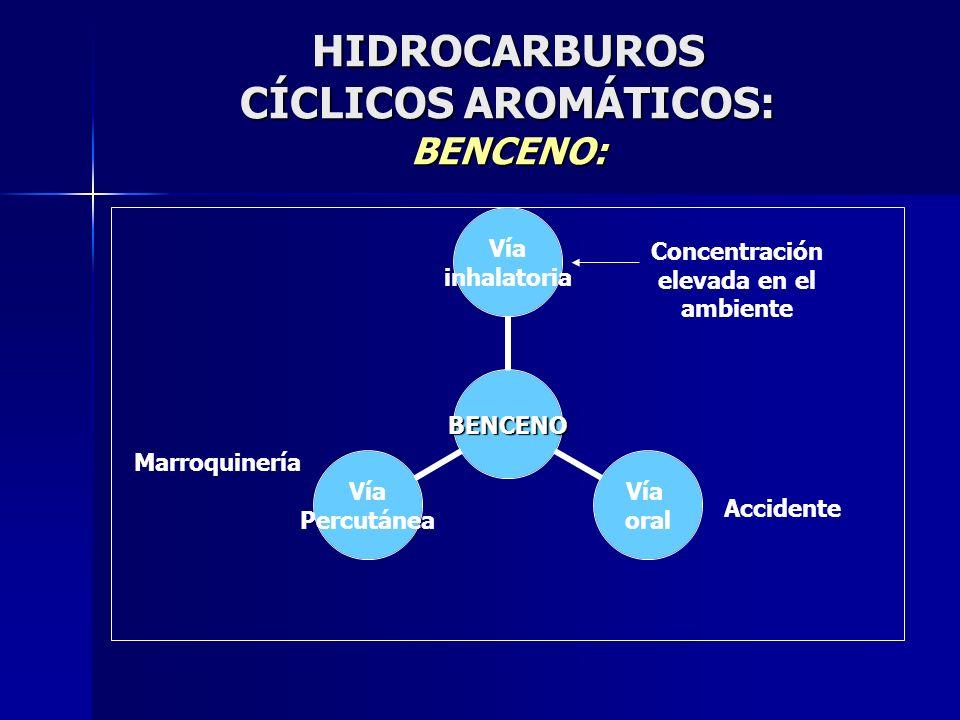 HIDROCARBUROS CÍCLICOS AROMÁTICOS: BENCENO: