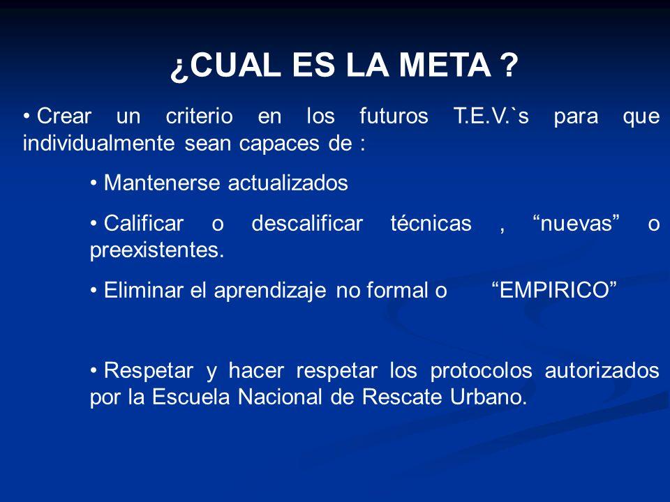 ¿CUAL ES LA META Crear un criterio en los futuros T.E.V.`s para que individualmente sean capaces de :