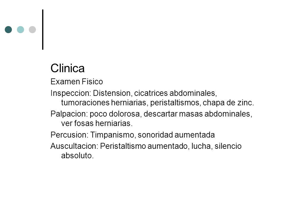 Clinica Examen Fisico. Inspeccion: Distension, cicatrices abdominales, tumoraciones herniarias, peristaltismos, chapa de zinc.