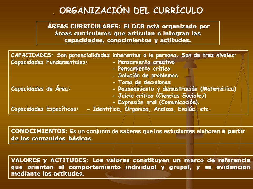 . ORGANIZACIÓN DEL CURRÍCULO